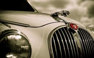Jaguar Classic Car