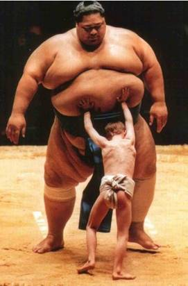 Sumo wrestler being pushed.