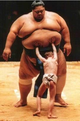 Sumo wrestler being pushed.